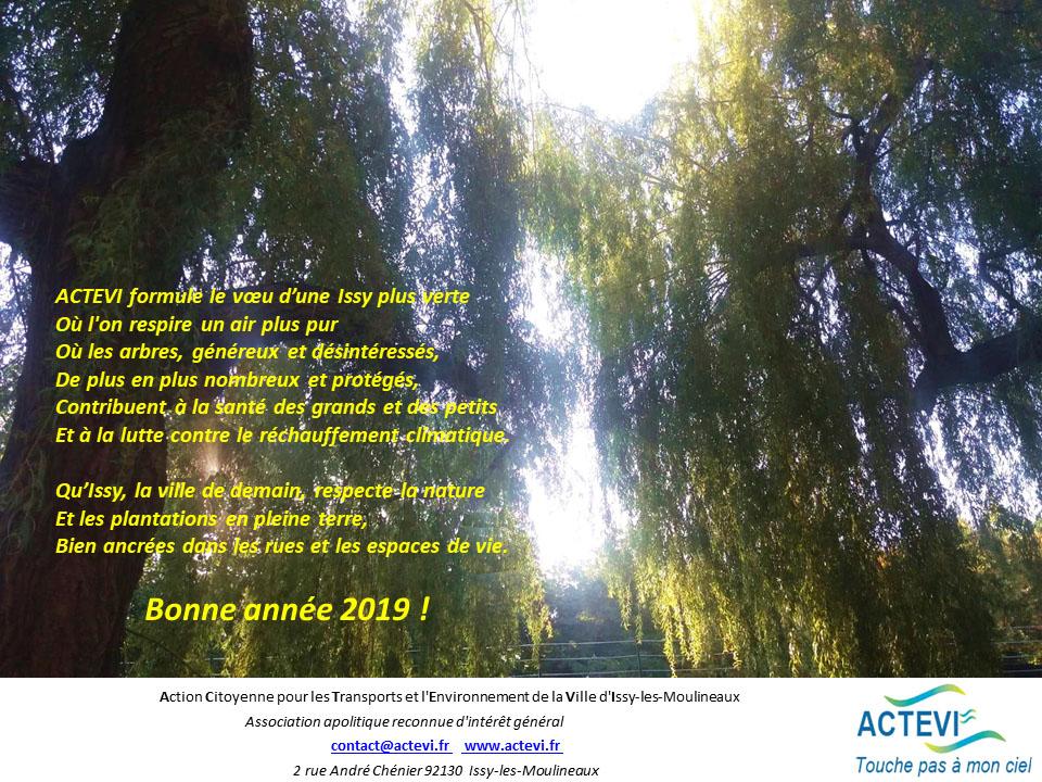 Bonne année 2019 de la part d'ACTEVI
